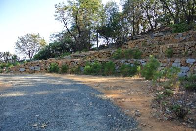 Meadow Vista Residential Lots & Land For Sale: 15025 Grand Knoll Dr -lot 281