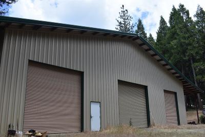 Volcano CA Single Family Home For Sale: $430,000