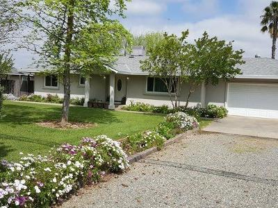 Elverta Single Family Home For Sale: 601 Elverta Road