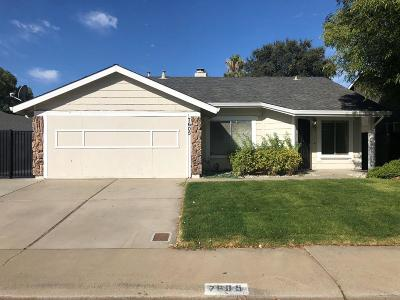 Antelope Single Family Home For Sale: 7605 Black Bear Dr