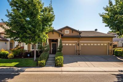 Lincoln Single Family Home For Sale: 2527 Granite Park Drive