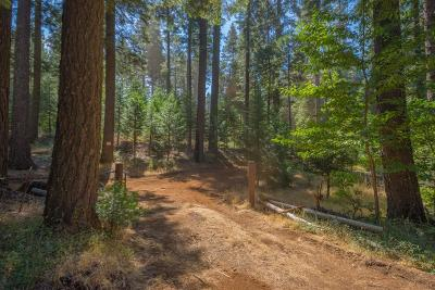 Pollock Pines Residential Lots & Land For Sale: 1 Blair Road
