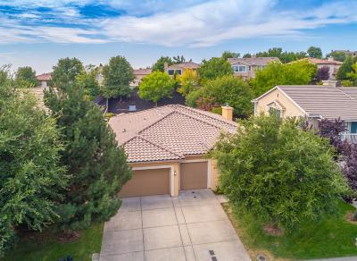 El Dorado Hills Single Family Home For Sale: 4129 Borders Drive
