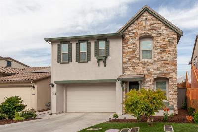 El Dorado Hills Single Family Home For Sale: 8036 Ryland Drive