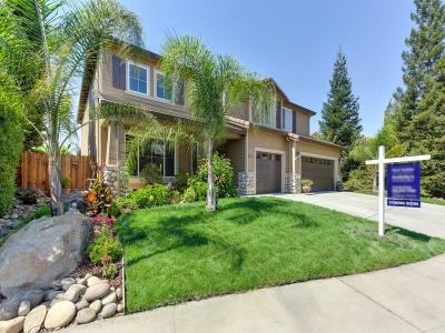 Roseville Single Family Home For Sale: 3141 Mount Tamalpais Drive