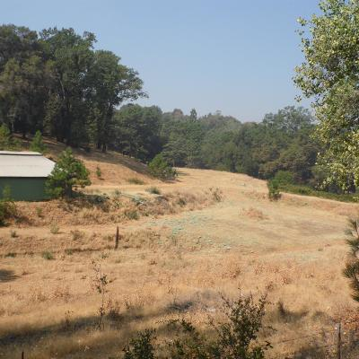Amador County Commercial Lots & Land For Sale: 17520 Bosse Road