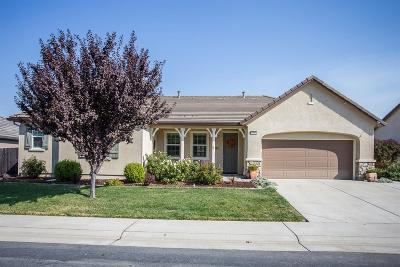 Lincoln Single Family Home For Sale: 1970 Omega Way