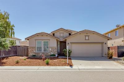 Elk Grove Single Family Home For Sale: 4804 Noriker Drive