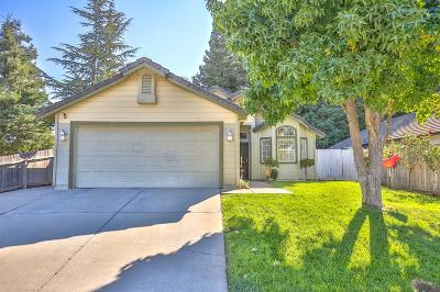 Elk Grove Single Family Home For Sale: 9493 Hidden Hollow Court