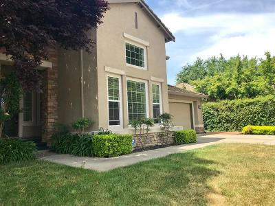 Elk Grove Single Family Home For Sale: 9584 Annika Court