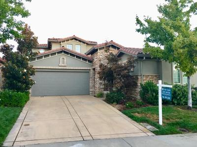 El Dorado Hills Single Family Home For Sale: 5026 Skellig Rock Way