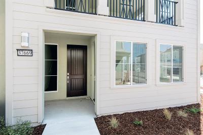 Newark Single Family Home For Sale: 37669 Estuary Street