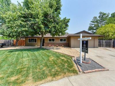 Elk Grove Single Family Home For Sale: 9067 El Oro Plaza Drive