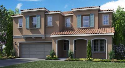 Tracy Single Family Home For Sale: 2461 Azalea Avenue