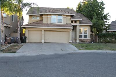 Elk Grove Single Family Home For Sale: 8956 Panamint Court