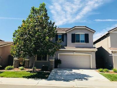 Roseville Single Family Home For Sale: 3576 Trentino Street