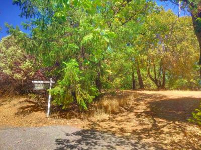 Colfax Residential Lots & Land For Sale: High Sierra View Drive