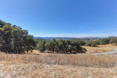 Jackson Residential Lots & Land For Sale: 9000 West Butte Mountain Lane