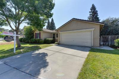 Elk Grove Single Family Home For Sale: 4024 Spindrifter Lane