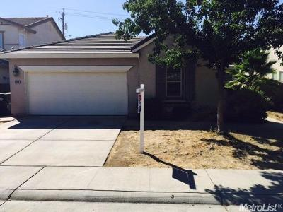 Elk Grove Single Family Home For Sale: 9268 Trout Way