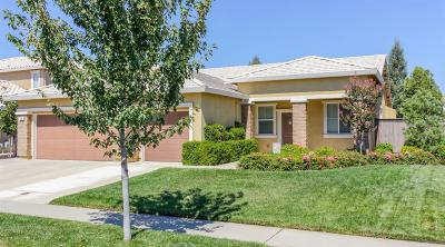 Roseville Single Family Home For Sale: 2541 Ranchland Way
