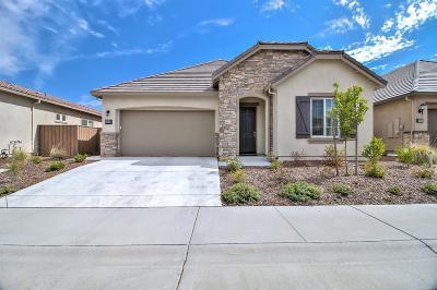 Sacramento Single Family Home For Sale: 3940 Ionian Sea Lane