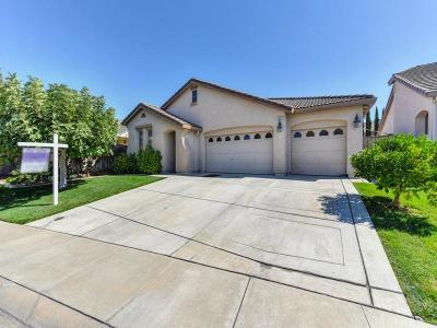 Elk Grove Single Family Home For Sale: 6620 Canner Court