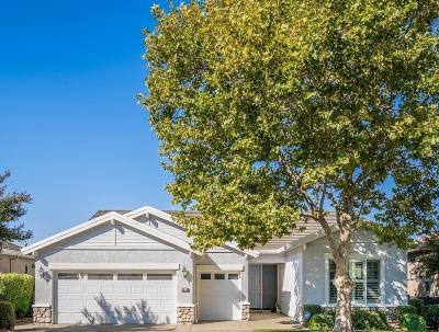 Rocklin Single Family Home For Sale: 4536 Scenic Drive