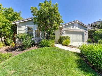 Rocklin Single Family Home For Sale: 3101 Aaron Drive