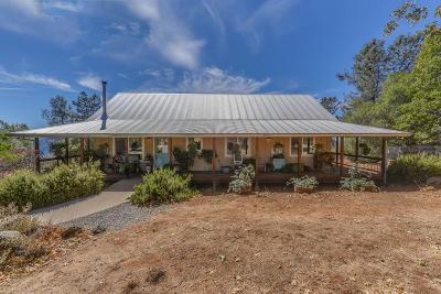 Murphys Single Family Home For Sale: 2550 Ponderosa Way Way