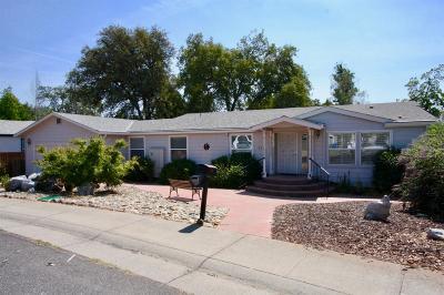 Murphys Single Family Home For Sale: 118 Oak Tree Court