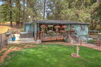 Meadow Vista Single Family Home For Sale: 904 Meadow Gate Road