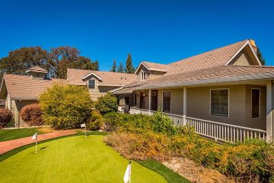Granite Bay Single Family Home For Sale: 4717 Abbey Hill