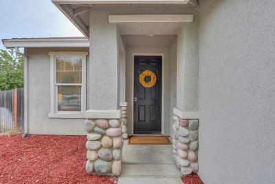 Elk Grove Single Family Home For Sale: 4729 Cleary Circle
