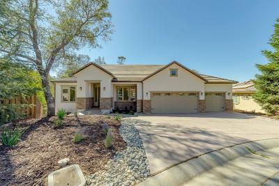 El Dorado Hills Single Family Home For Sale: 1120 Cambria Way