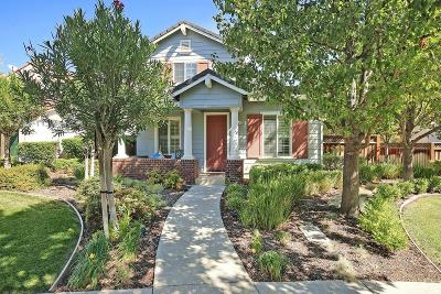 Mountain House Single Family Home For Sale: 152 La Rosa Lane
