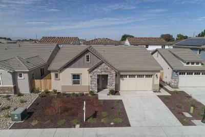 Manteca Single Family Home For Sale: 1931 Carogold Lane