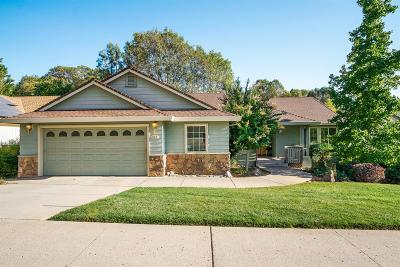 Grass Valley Single Family Home For Sale: 248 Horizon Circle