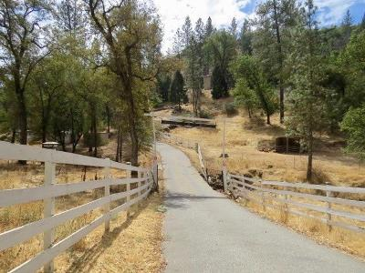 Grass Valley Single Family Home Active Short Sale: 17624 Dog Bar Road
