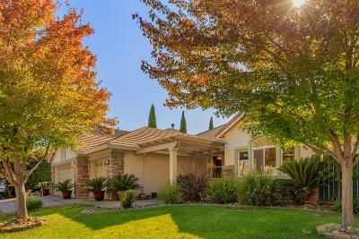 Elk Grove Single Family Home For Sale: 6918 Rawley Way
