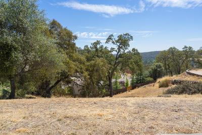Cameron Park Residential Lots & Land For Sale: 4321 Crazy Horse Road