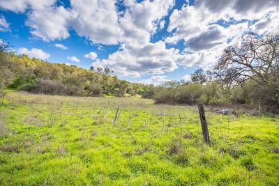 Penryn Residential Lots & Land For Sale: Caperton Court