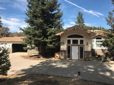El Dorado County Single Family Home For Sale: 4220 Savage Road