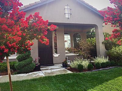 Elk Grove Single Family Home For Sale: 10339 Frank Greg Way