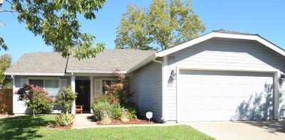 Sacramento Single Family Home For Sale: 8205 Sonoma Hills Way