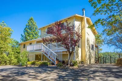 Placerville Single Family Home For Sale: 3121 Capitol Hill Drive