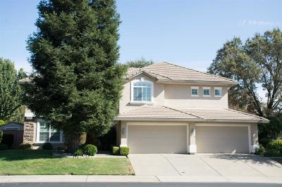 Roseville Single Family Home For Sale: 1616 Krpan Drive