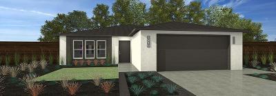 Single Family Home For Sale: 602 John Street