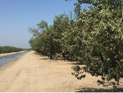 Modesto Commercial Lots & Land For Sale: 6842 Beckwith Road
