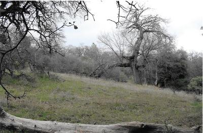 Placerville Residential Lots & Land For Sale: 2768 Dyer Way